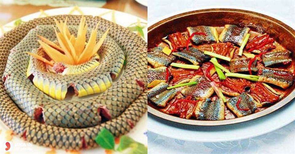 Nằm mơ thấy ăn thịt rắn đánh con gì?