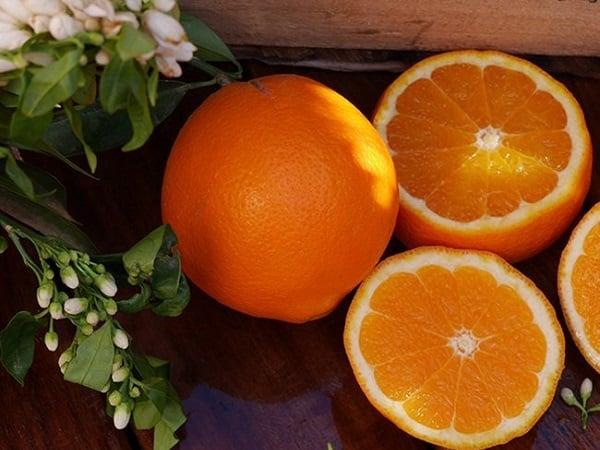 Mơ thấy quả cam điềm báo lành hay dữ?